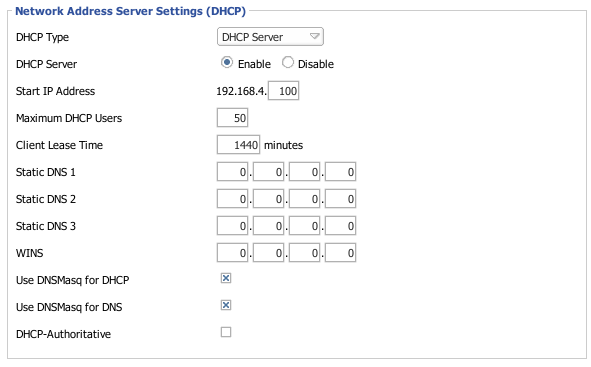 Image:DHCP Using DNSMasq Basic Settings.png