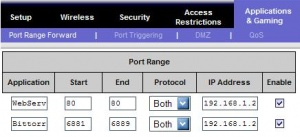 Portforwarding for a web server and a bittorrent client